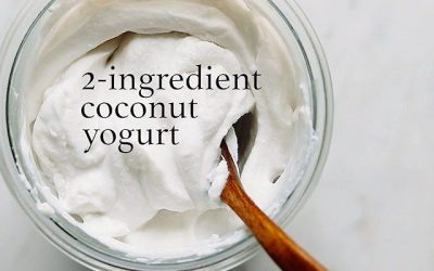 Nourished Gut: 2 Ingredient Coconut Yogurt